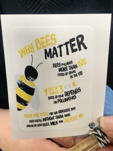 why bees matter